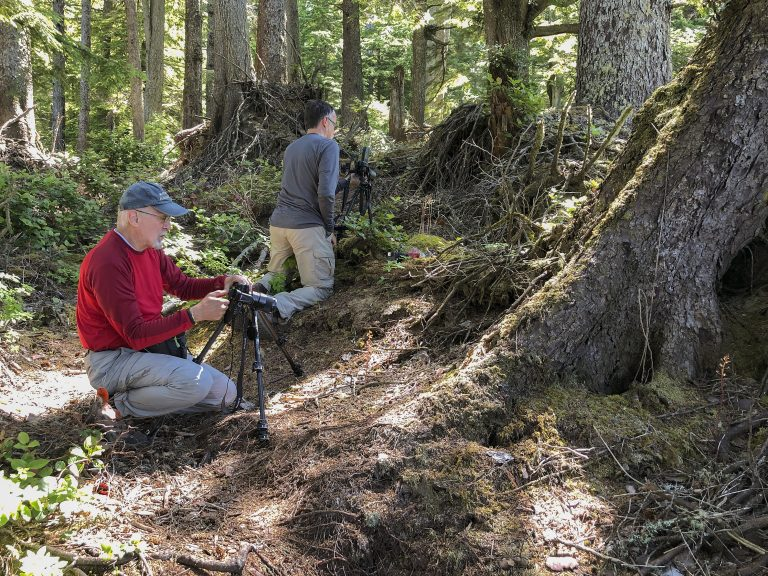 Jim and Walter photographing Corallorhiza maculata var. ozettensis (Ozette Coralroot orchid). June 25, 2019. Photograph by Dylan Fowler.