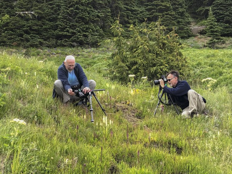 Jim and Walter photographing Platanthera dilatata var. dilatata (White Bog orchid). June 24, 2019. Photo by Dylan Fowler.